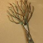 Copper and bronze tree of life mezuzah.