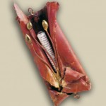 Copper and bronze Red Freedom Mezuzah